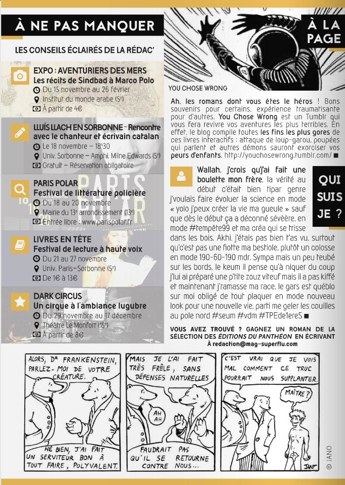Superflu Magazine indispensable littéraire